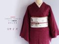 【レース刺繍着物Sサイズ】ミステリアス・ペイズリーのレース刺繍着物-ロマンチカ(送料無料)