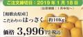 和歌山県産こだわり紀州はっさく10kg入
