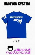 ハルシオンシステム ハルT