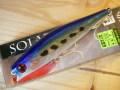 ダイワ SOLARIA 100F(ソラリア100F)