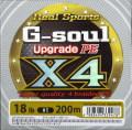 YGK-GソウルX4