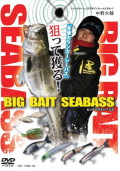 BIG BAIT SEABASS