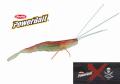 Berkley YABAI Shrimp 3.2インチ(バークレイ ヤバイ シュリンプ 3.2インチ)
