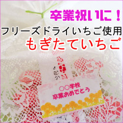 卒業祝い 贈り物 300円。