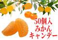 甘酸っぱい みかんキャンディ 50個入り 秋季・冬季限定