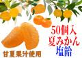 みかん塩飴(夏みかん味) 50個入り 伊予柑 甘酸っぱい 夏季限定