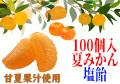 みかん塩飴(夏みかん味) 100個入り 業務用 夏季限定 甘酸っぱい
