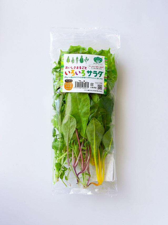 いろいろサラダパッケージ(表)