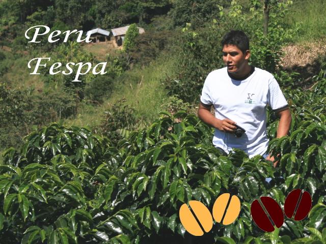ペルー「フェスパ農園」(シティ/フレンチ)200g