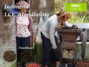 インドネシア「LCFマンデリン」