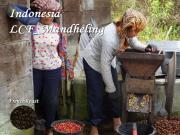 インドネシアマンデリン