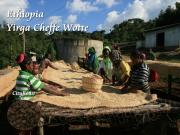 エチオピア・モカコーヒー