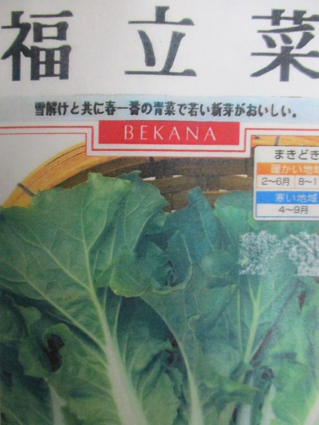 福立菜 10ml
