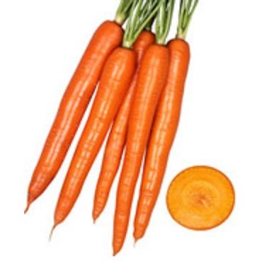 オレンジハーモニー