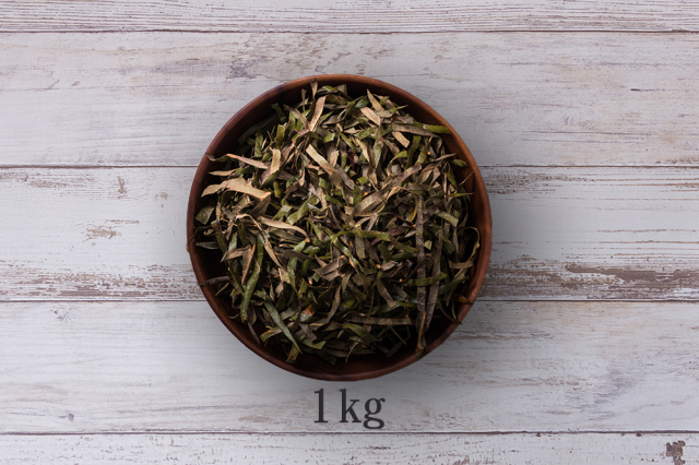 ビワの葉茶1kg