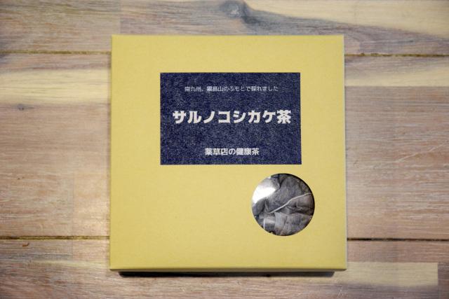 サルノコシカケT60