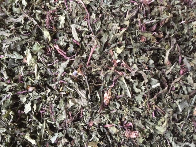 【送料無料※北海道・一部地域を除く】 タンポポ茎葉茶1kg 国産オーガニック健康茶