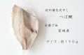 紀州備長炭干し 宮城県(天皇海山) つぼ鯛