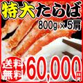 【送料無料】 特大タラバカニ(ボイル冷凍)約800g (ロシア産) 5肩
