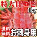 【送料無料】 特大サイズ甘エビ食べ放題 1kg (約50〜55匹前後)