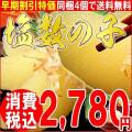 数の子/おせち/お歳暮/塩数の子500g特大(アメリカ産原料,北海道加工)