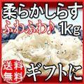 【送料無料】 無添加ふわふわ ちりめんじゃこ しらす 愛知県産 1kg