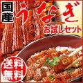 【送料無料】 うなぎ福袋 特大1尾+きざみうなぎ 2袋 蒲焼 国内産