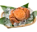 毛蟹(浜ゆで冷凍) 1尾
