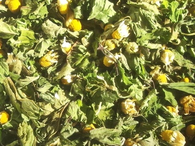 ★20%OFF★ハーブティー【北の香ブレンド】リーフL 北海道より減農薬有機肥料の国産ハーブのハーブティーをお届けします