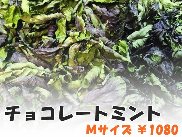 ハーブティー【チョコレートミント】リーフM 北海道より減農薬有機肥料の国産ハーブのハーブティーをお届けします