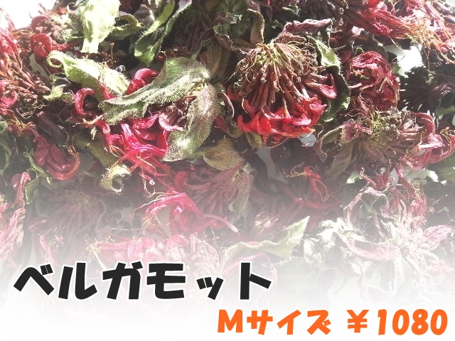 ハーブティー【ベルガモット(花)】リーフM 北海道より減農薬有機肥料の国産ハーブのハーブティーをお届けします