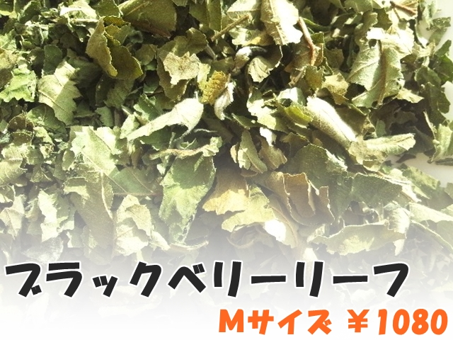 ハーブティー【ブラックベリーリーフ】リーフM デトックス・ハーブ 北海道の有機ハーブ専門農園より新鮮国産ハーブティーお届けします