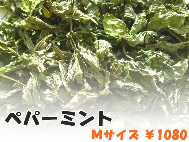 ハーブティー【ペパーミント】リーフM 北海道より減農薬有機肥料の国産ハーブのハーブティーをお届けします