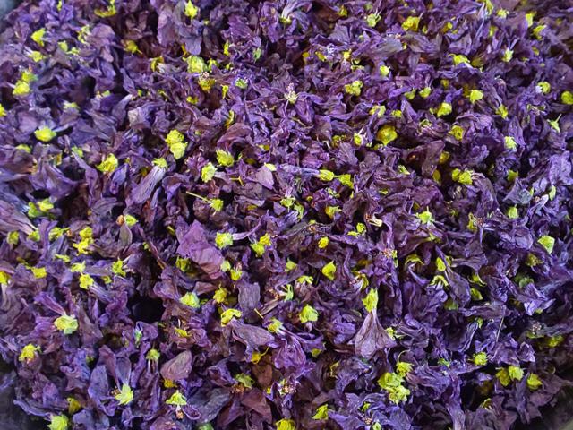 ハーブティー【マロウブルー】リーフL 12g 北海道より減農薬有機肥料の国産ハーブのハーブティーをお届けします