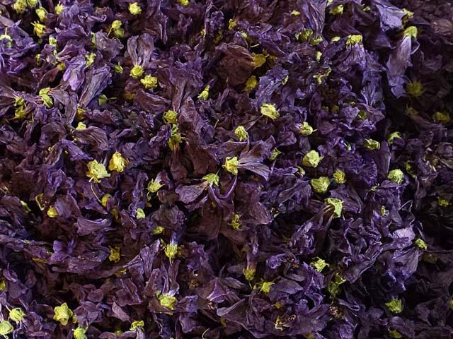 ハーブティー【マロウブルー】リーフL 北海道より減農薬有機肥料の国産ハーブのハーブティーをお届けします
