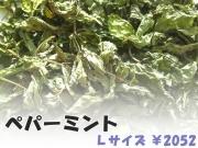 ハーブティー【ペパーミント】リーフL 北海道より減農薬有機肥料の国産ハーブのハーブティーをお届けします