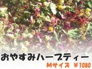 ハーブティー【おやすみハーブティー】リーフM 北海道より減農薬有機肥料の国産ハーブのハーブティーをお届けします
