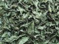 ハーブティー【ブラックミント】業務用・家庭用サイズ 北海道より減農薬有機肥料の国産ハーブのハーブティーをお届けします