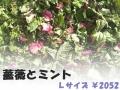 ハーブティー【薔薇とミント】リーフL 北海道より減農薬有機肥料の国産ハーブのハーブティーをお届けします
