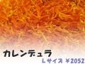 ハーブティー【カレンデュラ】リーフL 北海道より減農薬有機肥料の国産ハーブのハーブティーをお届けします