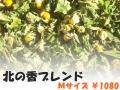 ハーブティー【北の香ブレンド】リーフM 北海道より減農薬有機肥料の国産ハーブのハーブティーをお届けします