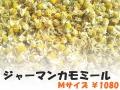 ハーブティー【ジャーマンカモミール】リーフM 北海道より減農薬有機肥料の国産ハーブのハーブティーをお届けします