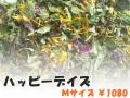 ハーブティー【ハッピーデイズ】リーフM 北海道より減農薬有機肥料の国産ハーブのハーブティーをお届けします
