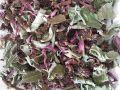 ハーブティー【エキナセア】リーフM 北海道より減農薬有機肥料の国産ハーブのハーブティーをお届けします