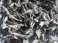 ハーブティー【セージ】リーフL 北海道より減農薬有機肥料の国産ハーブのハーブティーをお届けします