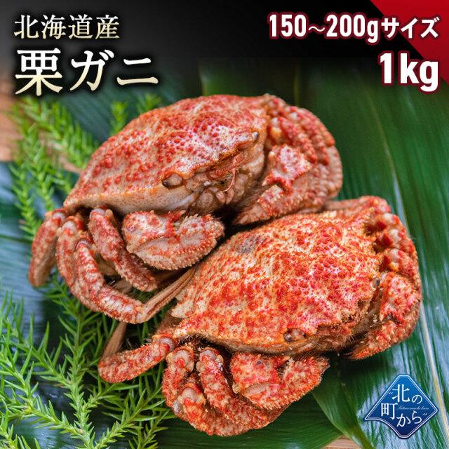 栗ガニ 北海道産 150g〜200gサイズ 1kg(4〜6尾) 小ぶりでもしっかりと濃いカニの出汁とカニミソが楽しめます! 栗蟹 クリガニ カニ 蟹