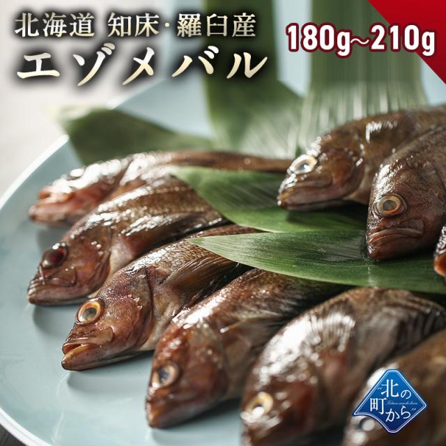 メバル 知床・羅臼産 蝦夷メバル一夜干し 180g-210g とても上品で甘みのある脂が人々を虜にします! めばる えぞめばる