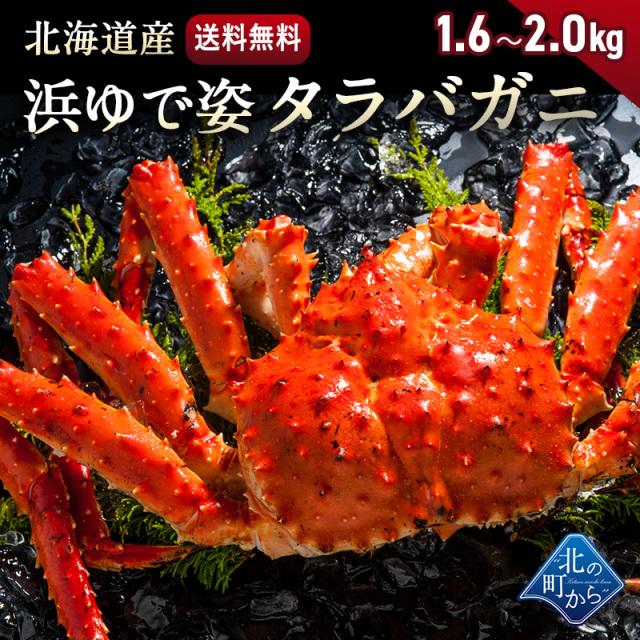 タラバガニ 北海道・オホーツク海産 【浜茹で急速冷凍 姿】 1.6kg~2.0kg 栄養価の高い身の引き締まったタラバガニ たらばがに 蟹 カニ かに