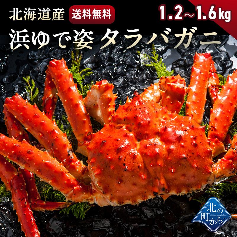 タラバガニ 北海道・オホーツク海産 【浜茹で急速冷凍 姿】 1.2kg~1.6kg 栄養価の高い身の引き締まったタラバガニ たらばがに 蟹 カニ かに