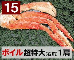 15) 極上ボイル本タラバガニ 超特大(右爪)サイズ  1肩 約1.6kg